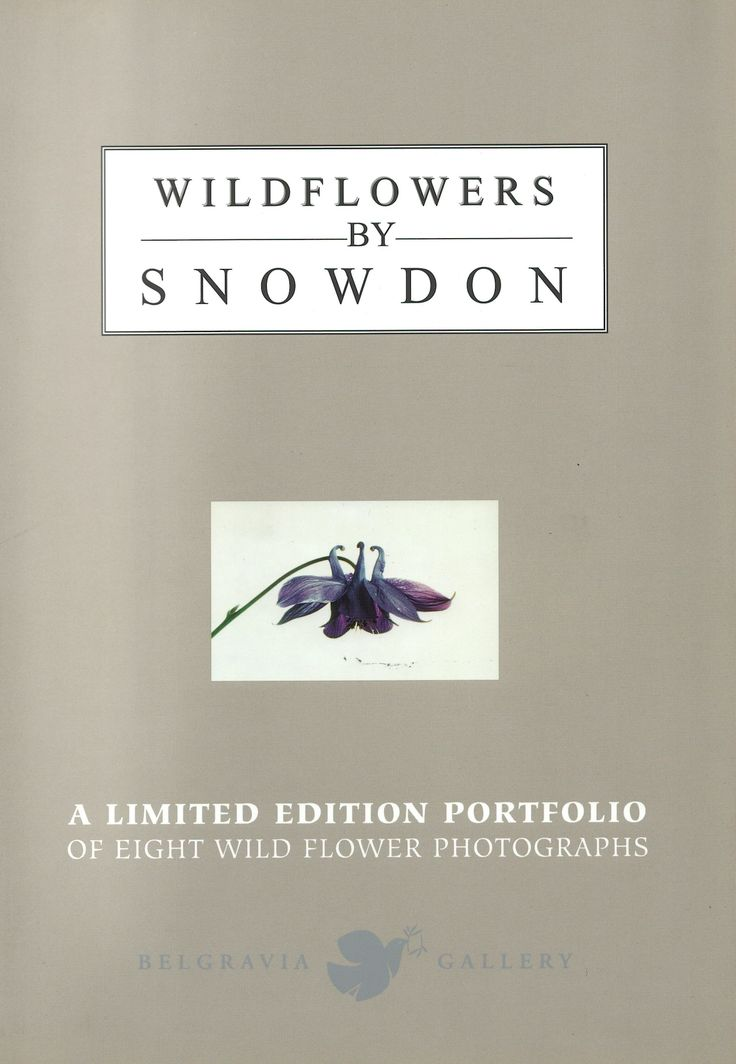 Belgravia Gallery | Lord Snowdon : Wild Flower Portfolio of Photographs |