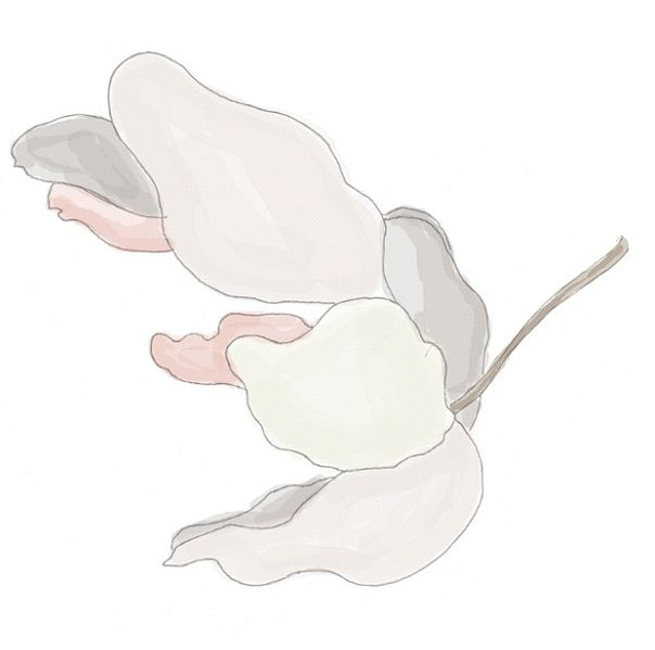 Floating flower for SS'13 hand drawn by Eve