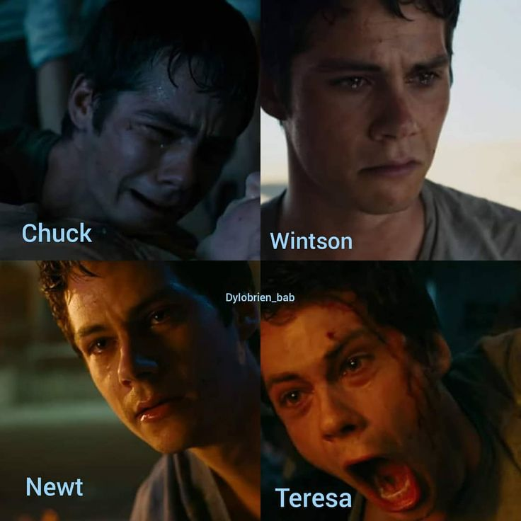 He was crying for Chuck bc they were close, it was the way that Winston died and the realization of how that shows on his face, he was in shock for Newt bc of the way Newt has to die, and Teresa was one of the only things he had left and she was almost saved but then she fell.