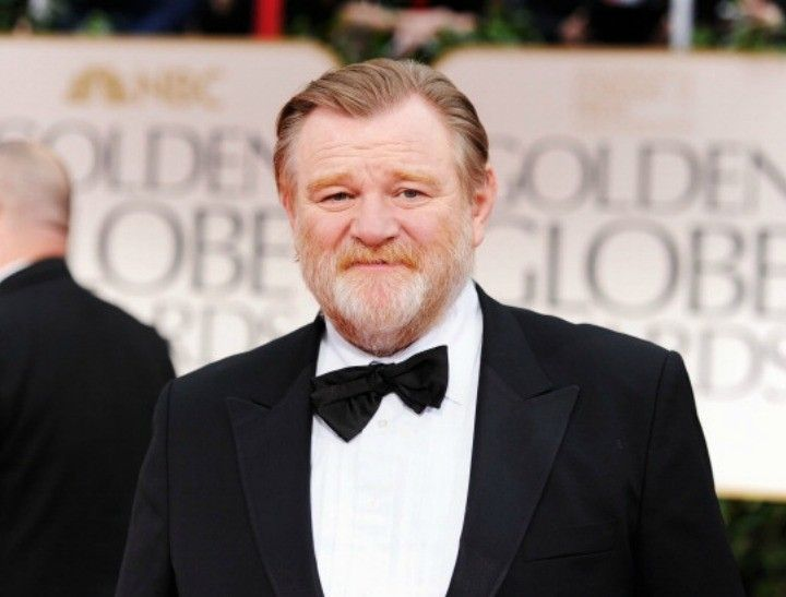 Image result for brendan gleeson young