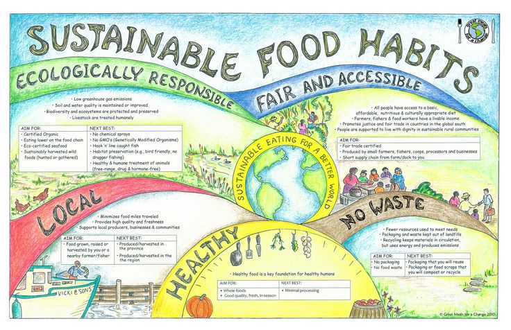 SustainableFoodHabitPoster Sustainable food