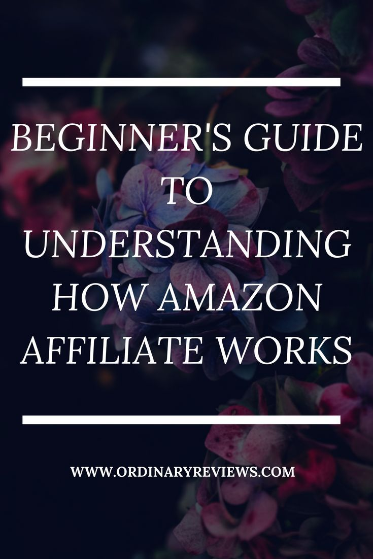 Beginner's Guide To Understanding How Amazon Affiliate Works -Watch Free Latest Movies Online on Moive365.
