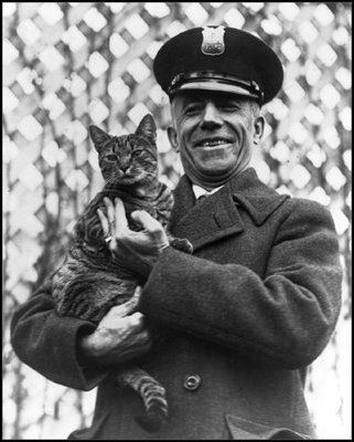 Officer Benjamin Fink holds Tiger - President Calvin Coolidge's cat, at the White House on March 25, 1924