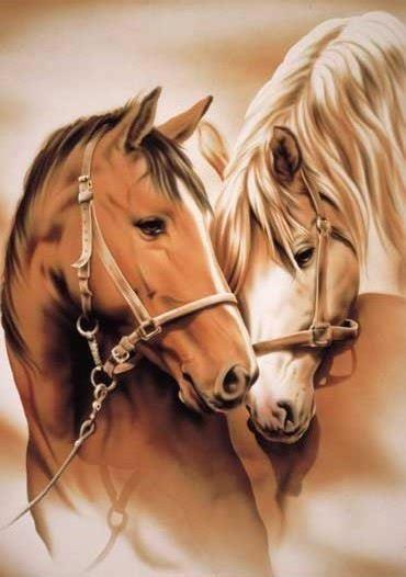 les chevaux c'est top!