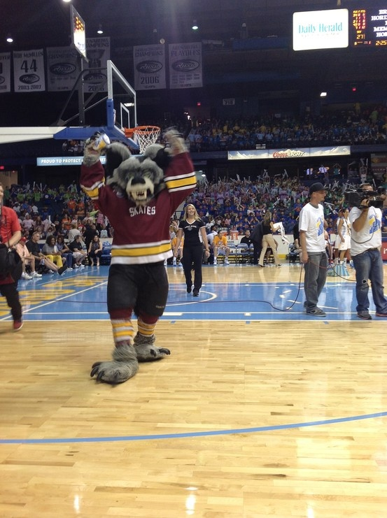 The Chicago Wolves' mascot celebrates Sky Guy's birthday on July 11