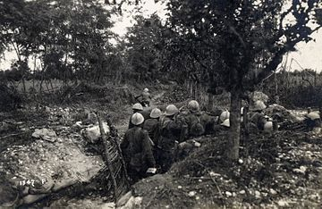 Provisional Italian trenches along the Piave river