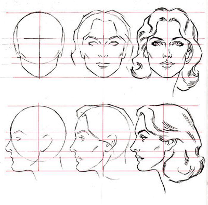 26 Best Head Refs Images On Pinterest Faces Studios And Anatomy