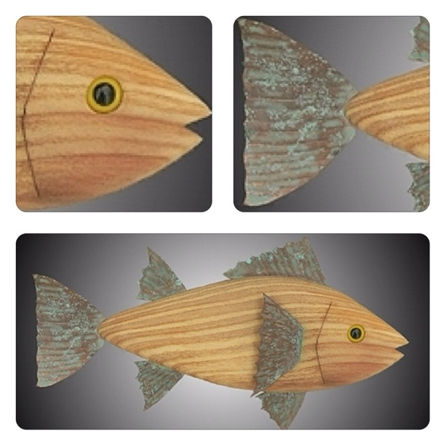 17 best images about fish art on pinterest you ship for Salt bath for fish