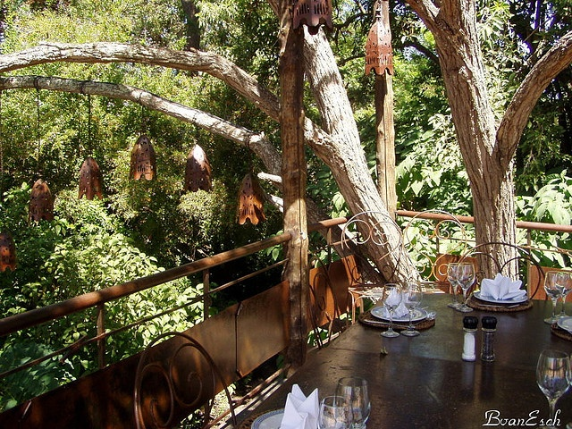 Moyo treehouses at Spier, Stellenbosch, South Africa.