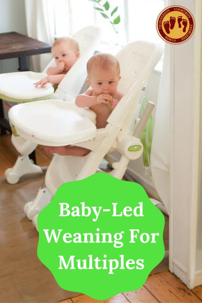 Baby-Led Weaning For Multiples