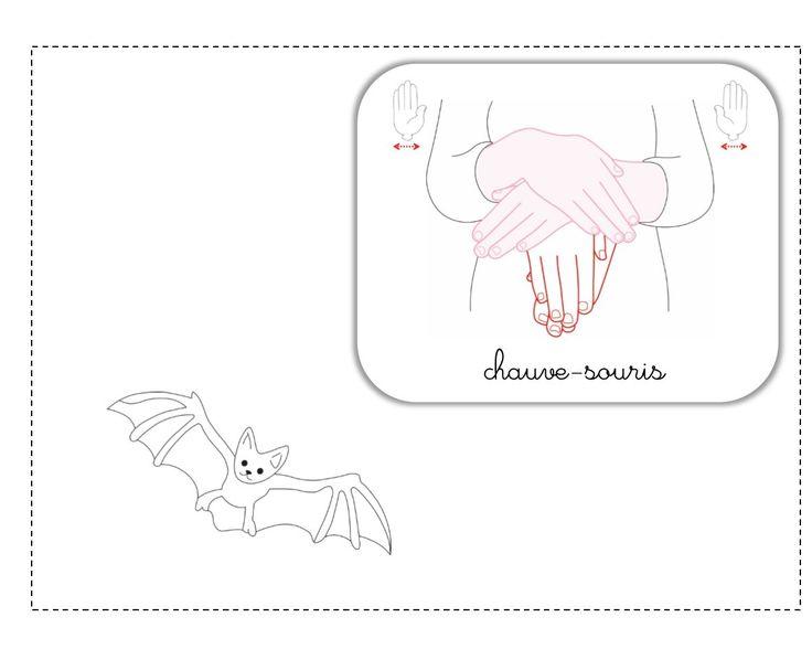 chauve-souris LSF illustration