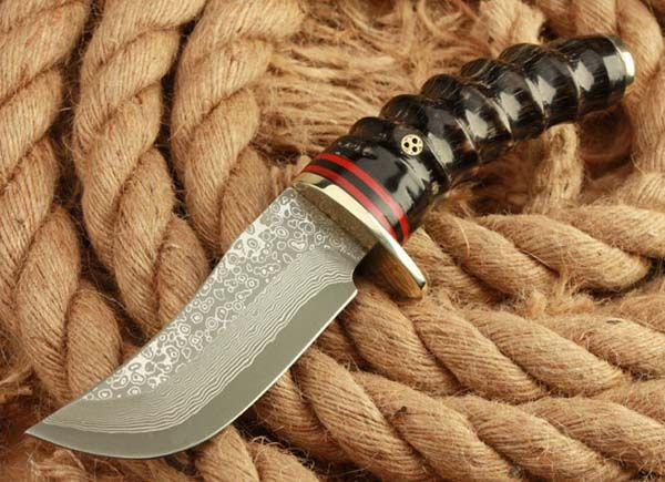Outdoor Survival Knives for Sale Best Stainless Steel Survival Knife for Hunting Camping Hiking and Collection