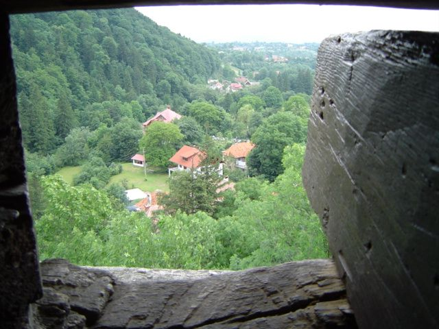 Photo: Florenţa Zaharescu