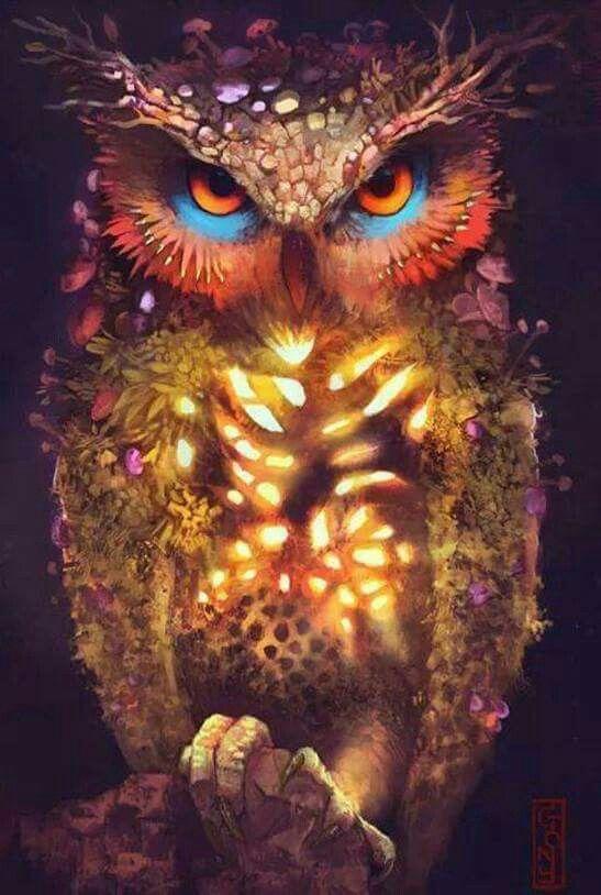 123 besten ALL THINGS OWL Bilder auf Pinterest | Eulen ...