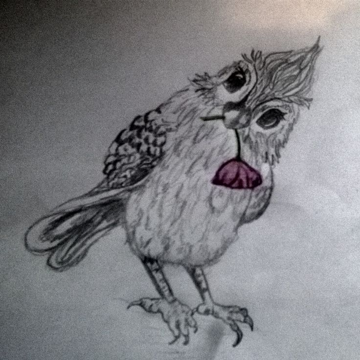 Birdy 🐦