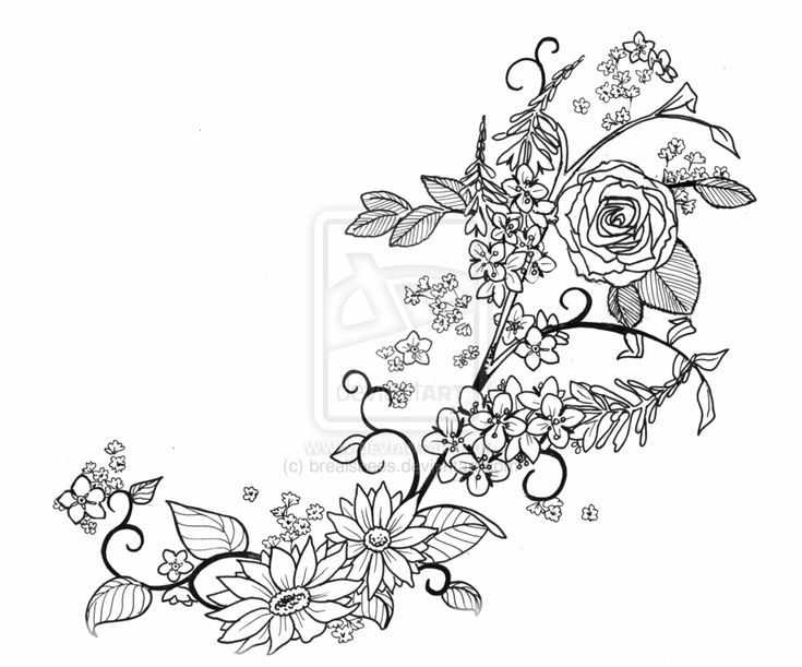 Wildflower Line Drawing : Wildflower tattoo designs pixshark images
