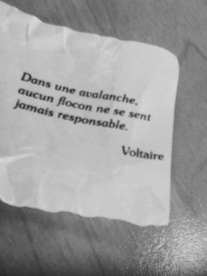 ça n'a jamais été de Voltaire. c'est de Stanislaw Jerzy Lec, (pseudonyme littéraire Stach), de son vrai nom Stanisław Jerzy de Tusch-Letz, né à Lviv le 6 mars 1909 et mort à Varsovie le 7 mai 1966, poète et écrivain polonais.