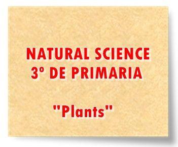 "NATURAL SCIENCE DE 3º DE PRIMARIA: ""Plants"""