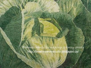 the Brash and Sassy Studio: AA~06 ... CABBAGE PATCH
