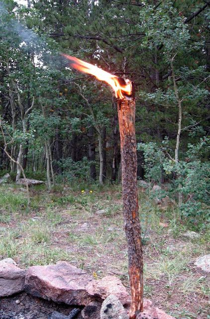 Rocky Mountain Bushcraft: Wilderness Survival: How to make a Pine Knot Torch for emergency light