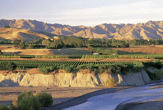 Marlborough Wine Region: Wineries, Wines, Vineyards and Tours