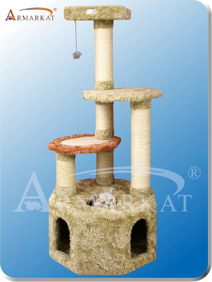 17 Best Images About Pet Houses On Pinterest Cat Towers