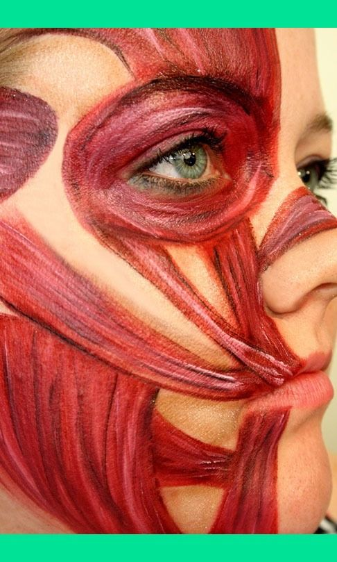 Facial muscles makeup- get students to do to mremember muscles of face!!
