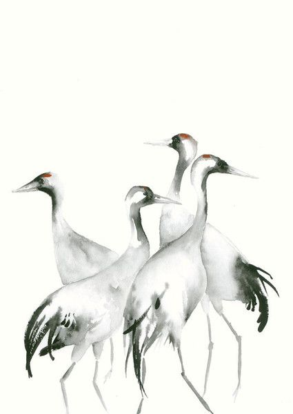 Watercolour paintings – Art Print from Watercolor Painting Four Cranes – a unique product by dear pumpernickel (artist Catherina Turk)