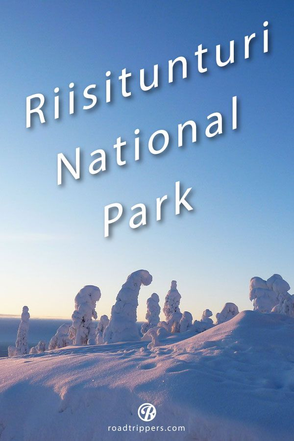 Riisitunturi National Park in Finland is a winter wonderland.