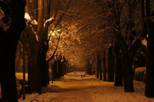 Sweet Winter♡ lanscape  #magic -  #wild,  winter,  #perfect -  #light  #hipster -  #photography