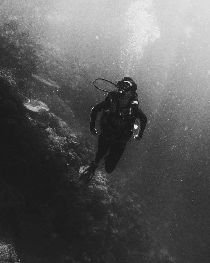 """""""From birth man carries the weight of gravity on his shoulders. He is bolted to earth.  But man has only to sink beneath the surface and he is free."""" - Jacques Yves Cousteau  _  #diving #scubadiving #travel #travelph #vscogrid #sinopinas #saansapinas #itsmorefuninthephilippines #sea #underwater #carabaodivecenter #pilipinasdestination #wanderlust #travelgram #pinasmuna #vsco #vscophilippines #vscotravel #curationNation #allaboutphils #choosePhilippines #WTNadventures #freespiritsPH #the_PH…"""