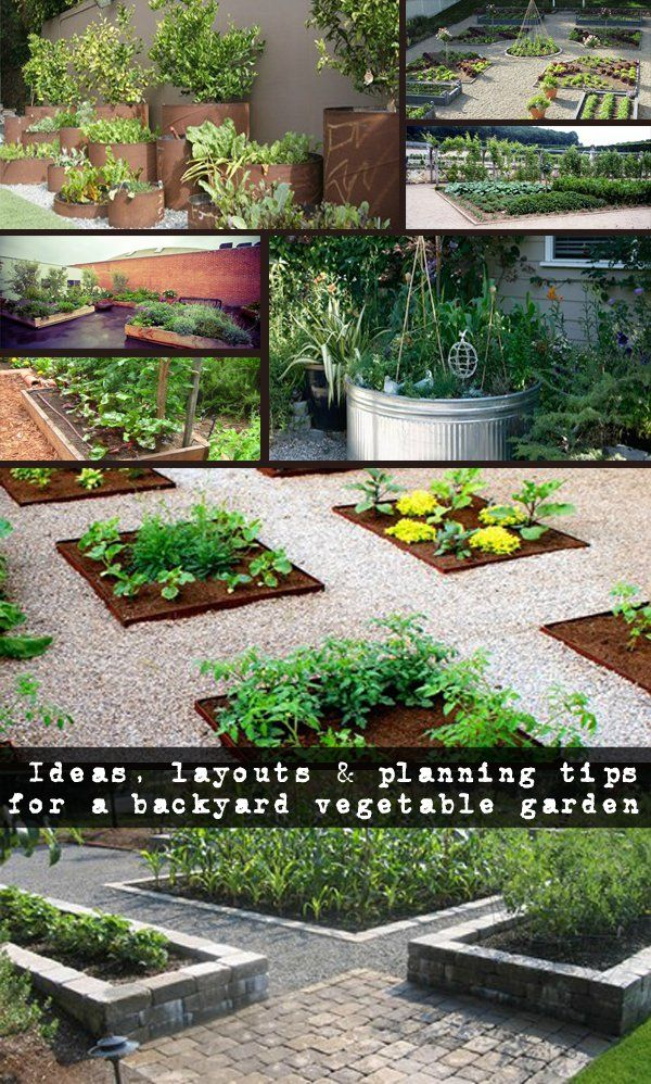 Ideas, layouts & planning tips for a backyard vegetable garden - NaturalGardenIdeas.com