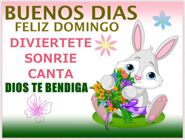 17+ Images About Domingo: Saludos Y Buenos Deseos On