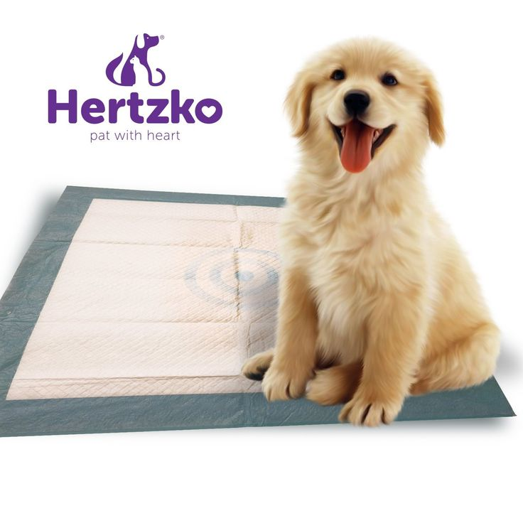 50 Large Super Absorbent Training Pads by Hertzko - High Quality Pads for Dogs and Cats - With Thick and Leak-Proof Liners ! >>> Details can be found by clicking on the image.