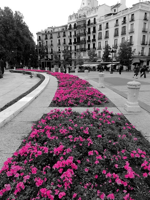 Outside of Palacio Real  Madrid, Spain
