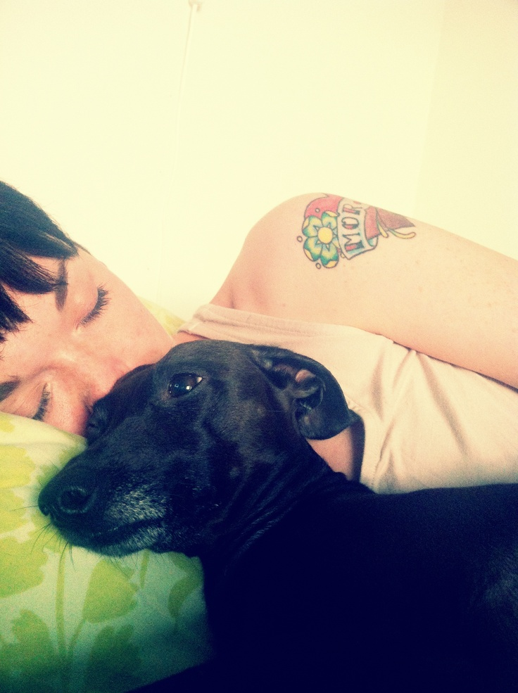 Well, this is me and my Italian greyhound Aiko: Italian Greyhound