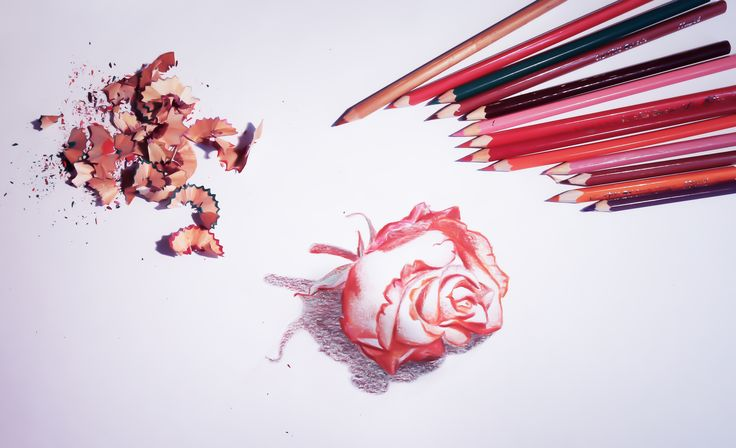 Rose made with pencils