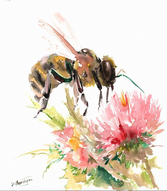 Honey Bee and Flower original watercolor painting by ORIGINALONLY