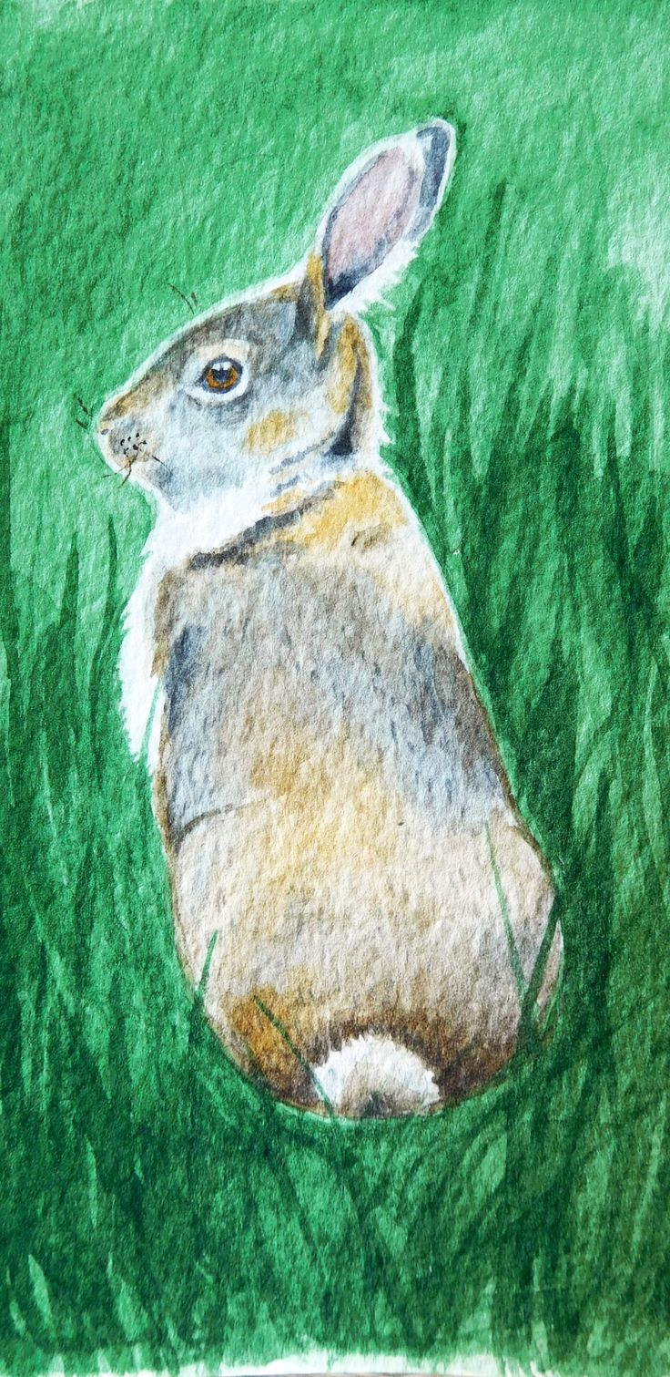 Watrcolor card with a bunny