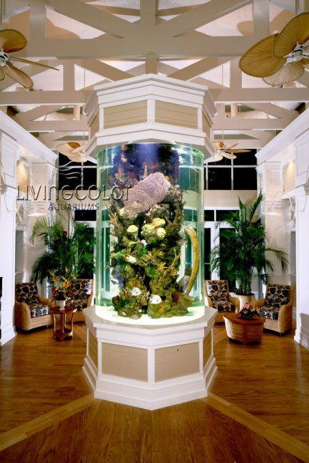 12 best living color aquariums hospitality images on pinterest fish tanks aquariums and fish. Black Bedroom Furniture Sets. Home Design Ideas