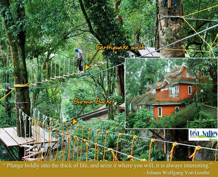 Treetop Adventure from Tea Valley Resort,Munnar. A view of our special rides,Earthquake walk-Risk your steps with simulated earthquake& Burma Bucket-A walk in the air on ropes.