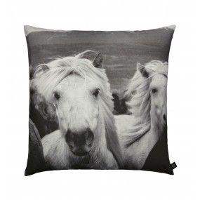 Icelandic Horses, 80x80 cm