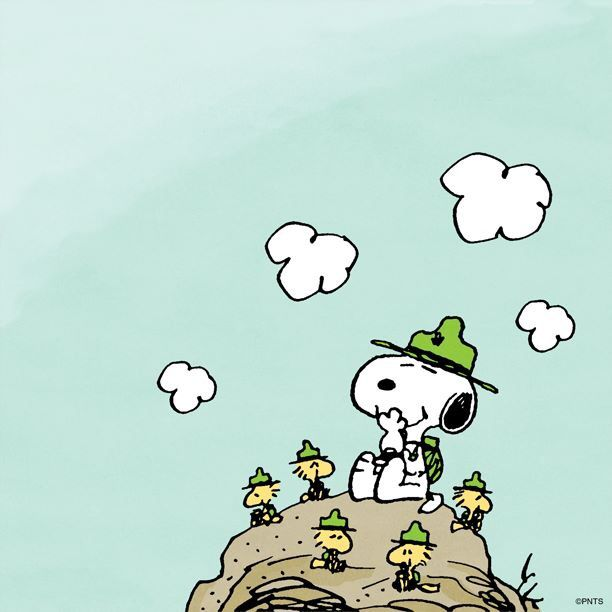 Image result for snoopy camping