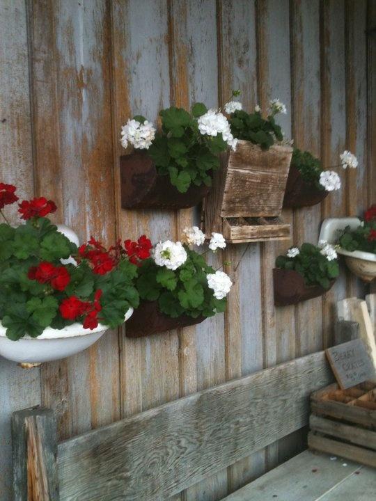 Red geraniums in old sink: Gardens Ideas, Outdoor Ideas, Ideas General, Old Sink, Yard Ideas