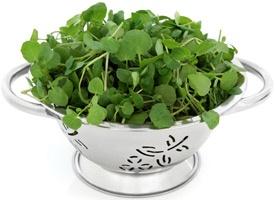 Watercress Salad with Browned, Pan-Marinated Tofu Strips, Shallots, and Walnuts