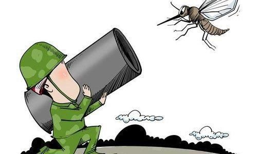 Do not use a cannon to kill a mosquito - Confucius