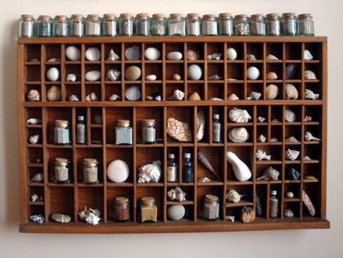 la mia collezione di conchiglie, sassi, sabbia