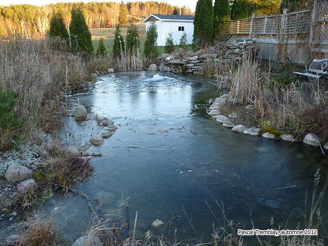 The 25 Best Plastic Pond Ideas On Pinterest Diy Pond