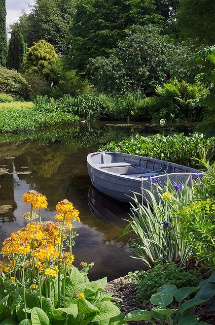 The amount of work that would have gone into this amazing pond is just staggering but what an amazing result