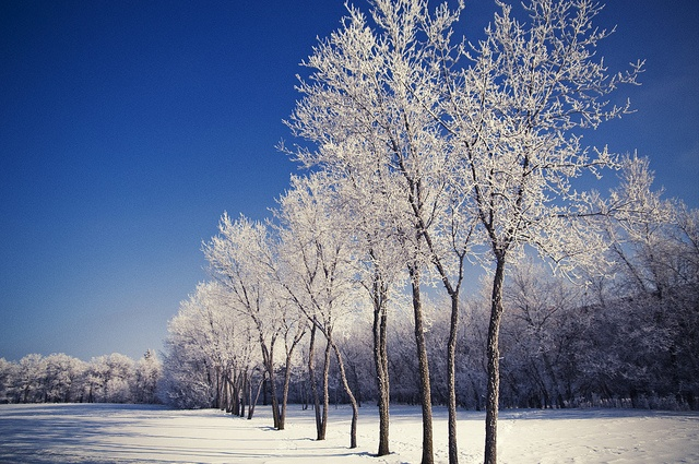 Assiniboine Park, Winnipeg, Manitoba.